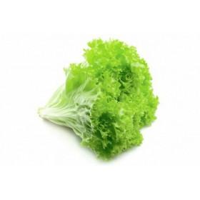-Салат листовой зеленый 100гр